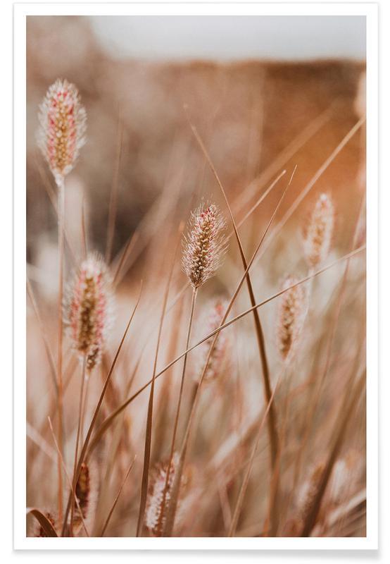 Blätter & Pflanzen, An English Walk -Poster