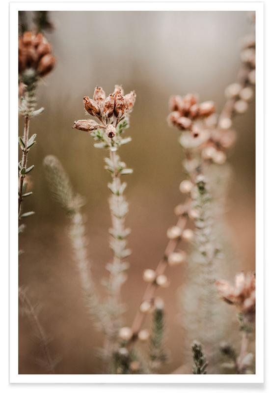 , Nature Out Of Focus -Poster
