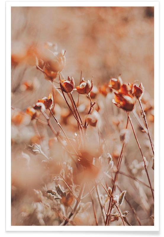 , Autumnal Flowers Poster