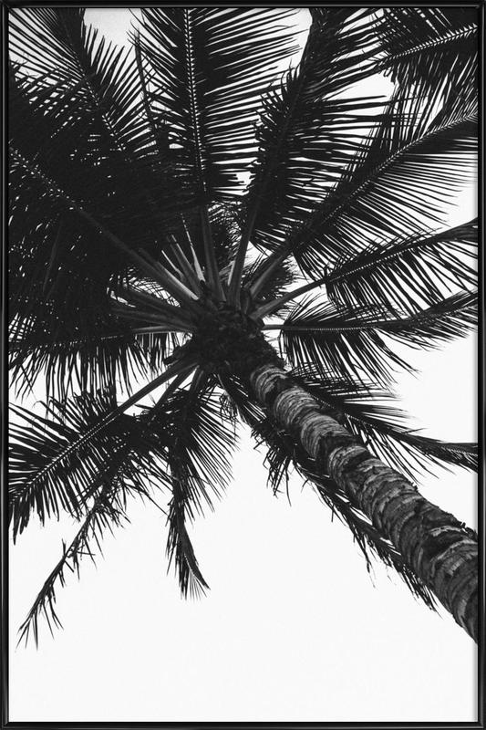 Propeller Palm Poster i standardram