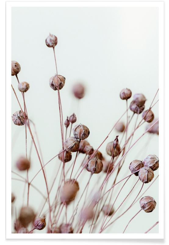 , Poppy Heads poster