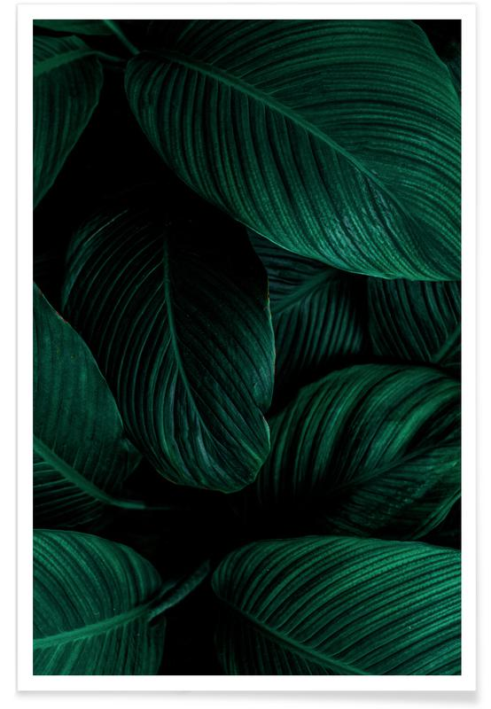 Leaves & Plants, Layered Leaves Poster