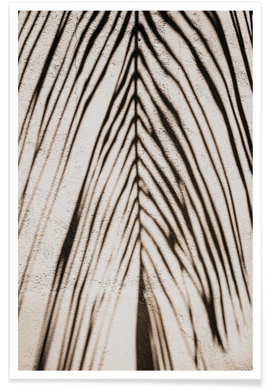 Zwart en wit, Palm Shadow poster