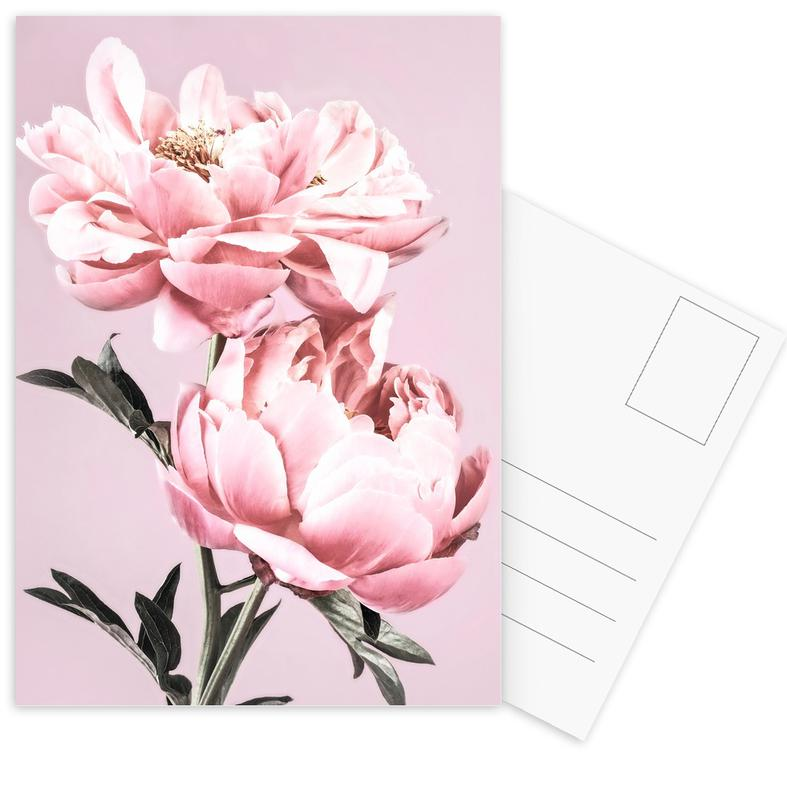 Pink Peonies -Postkartenset