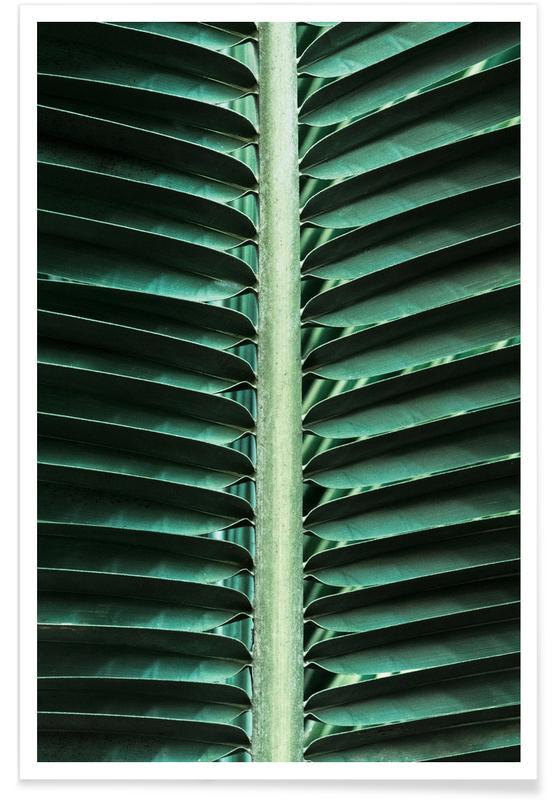Hojas y plantas, Palmas, Palm Edges póster