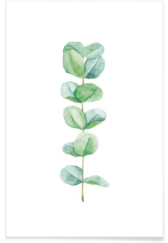 , Eucalyptus Watercolour Poster