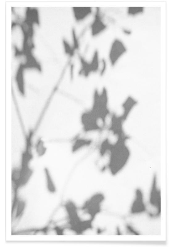 , Shadow affiche