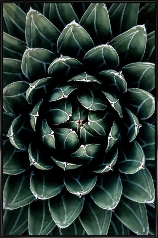 Cactus Heart -Bild mit Kunststoffrahmen