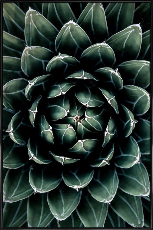 Cactus Heart Framed Poster