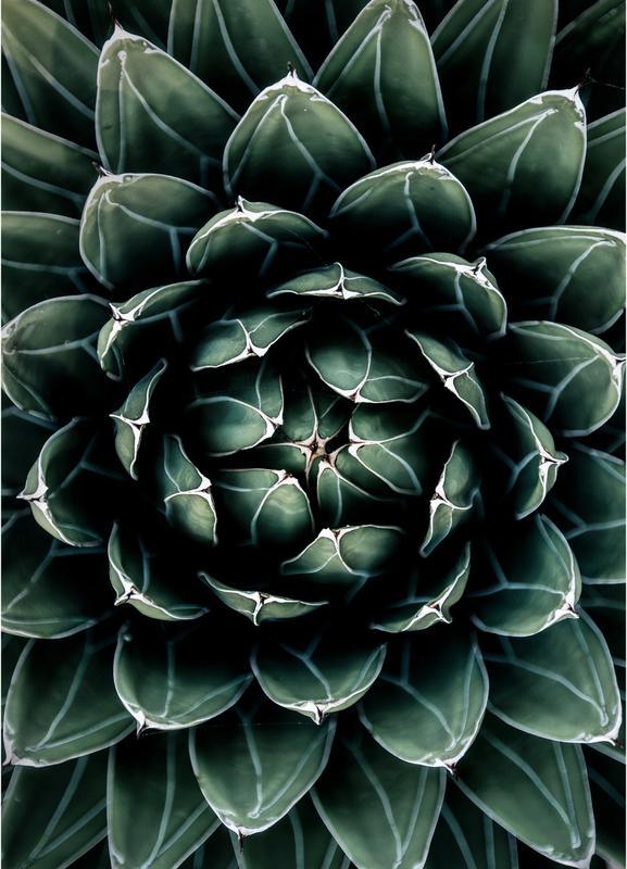 Cactus Heart -Leinwandbild