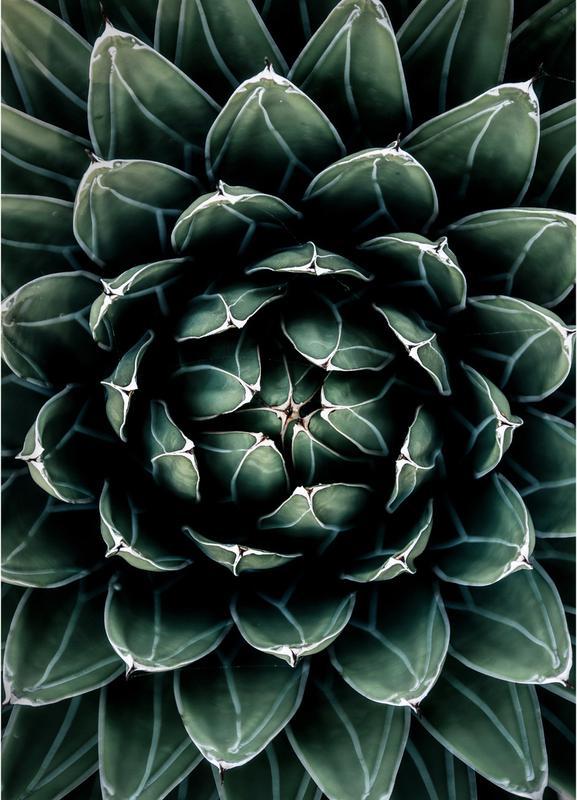 Cactus Heart Lærredstryk