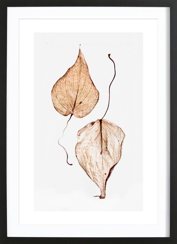 Delicate Leaves Poster i träram