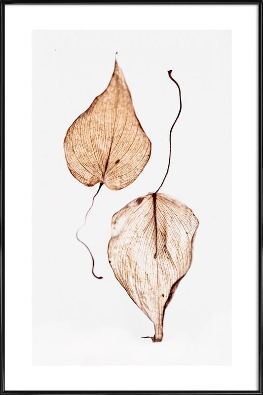 Delicate Leaves Framed Poster