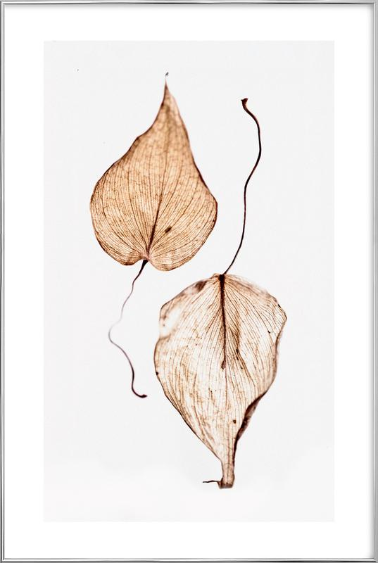Delicate Leaves Poster in Aluminium Frame