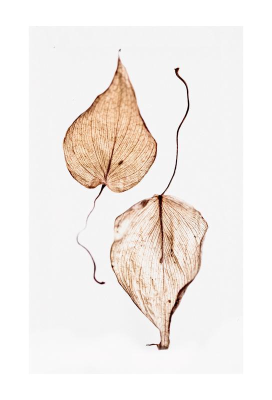 Delicate Leaves Aluminiumtavla