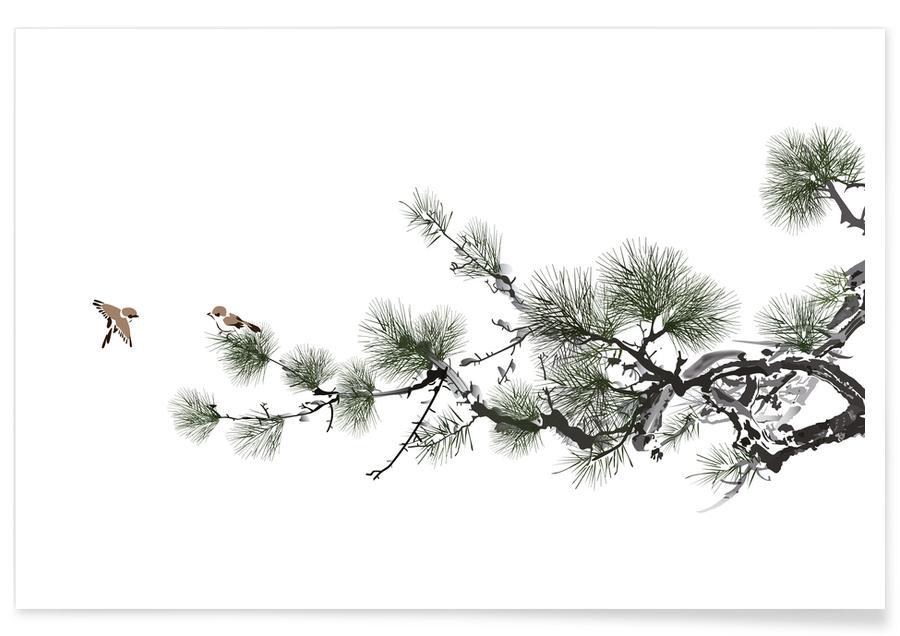 Arbres, D'inspiration japonaise, Noir & blanc, Feuilles & Plantes, Birds and Pine II affiche