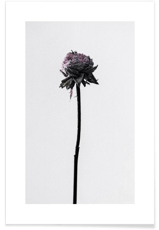 Sort & hvidt, Wilted Flower Plakat