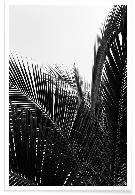 Sort & hvidt, Monochrome Palm Plakat