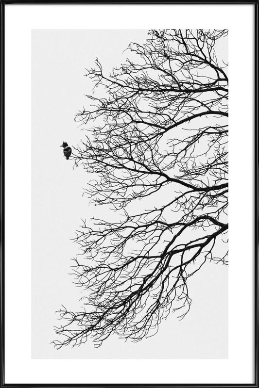 Winter Bird Poster i standardram