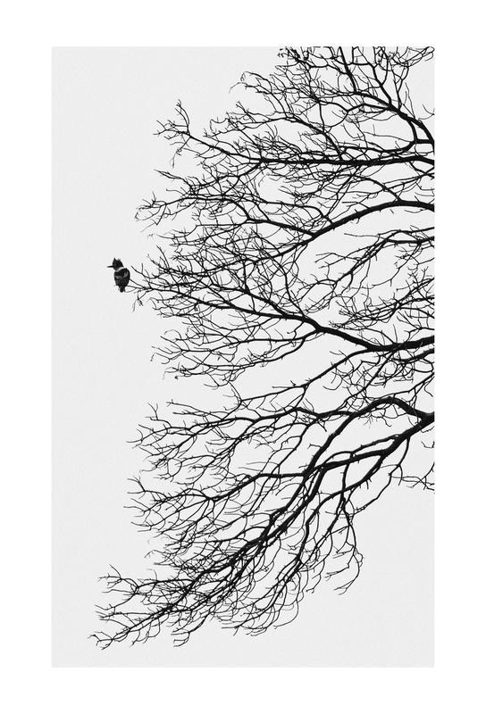 Winter Bird Akrylglastavla