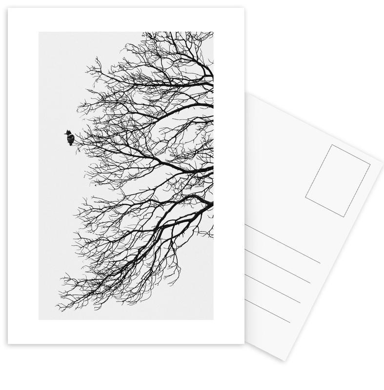 Winter Bird -Postkartenset