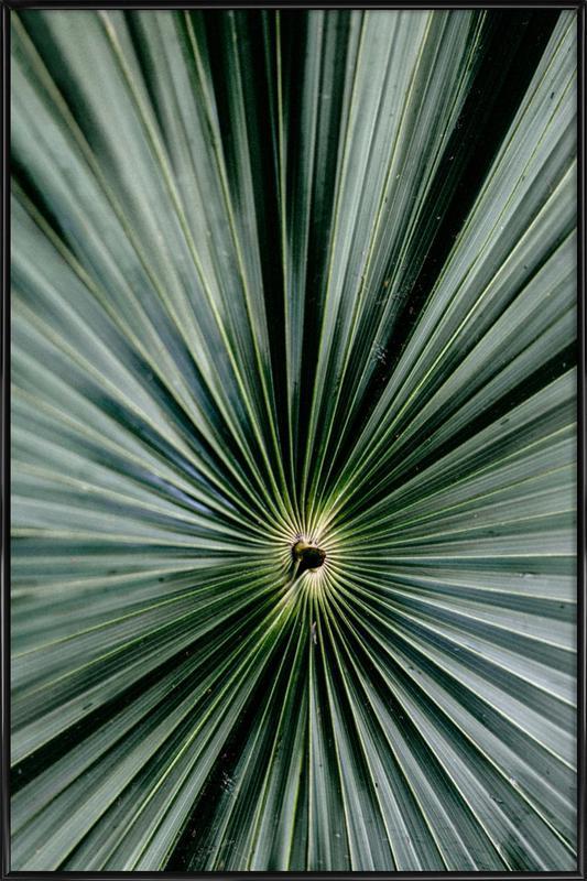 Spiral Palm Poster i standardram