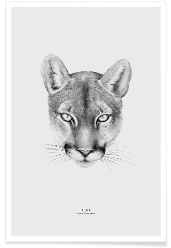 , Puma Plakat