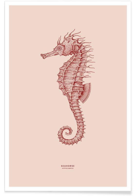 Zeepaardjes, Seahorse II poster