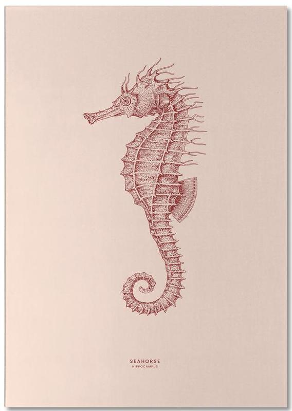 Seahorse II -Notizblock