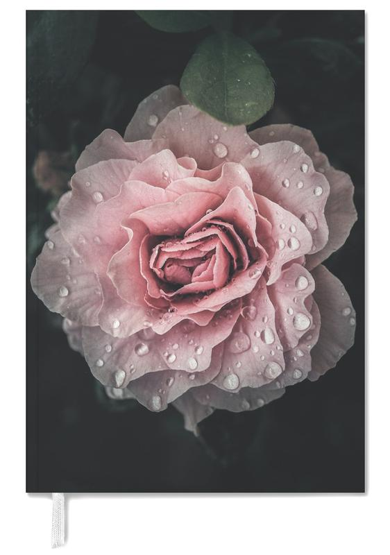Raindrops on Pink Rose -Terminplaner