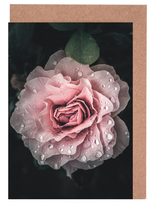 Raindrops on Pink Rose Greeting Card Set