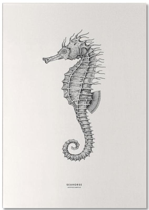 Seahorse -Notizblock
