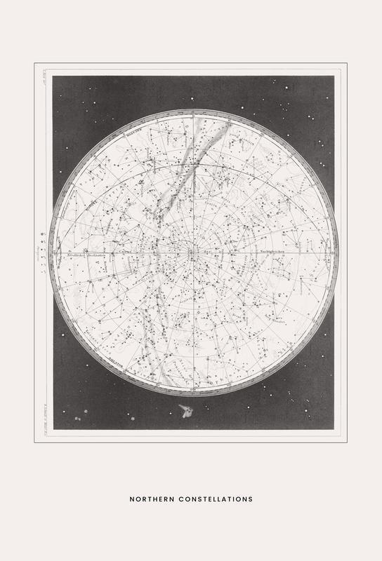 Northern Constellations Aluminiumtavla