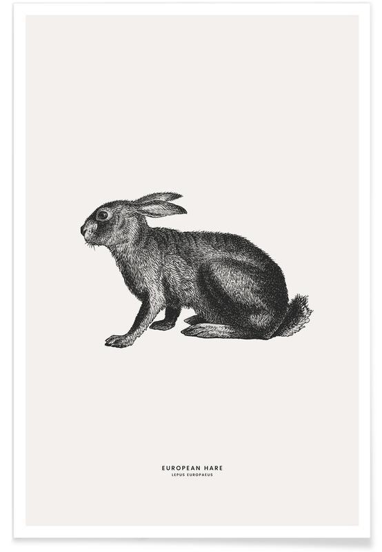 Lapins, Art pour enfants, Pâques, European Hare affiche