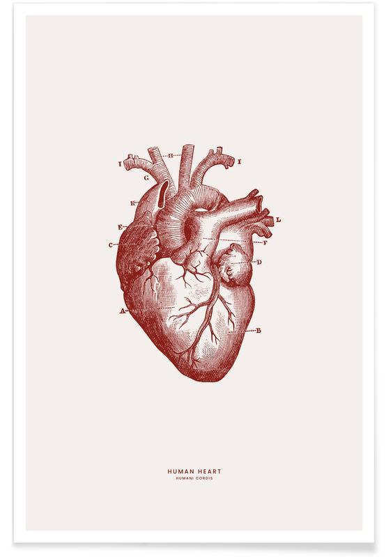 Hjerter, Human Heart II Plakat