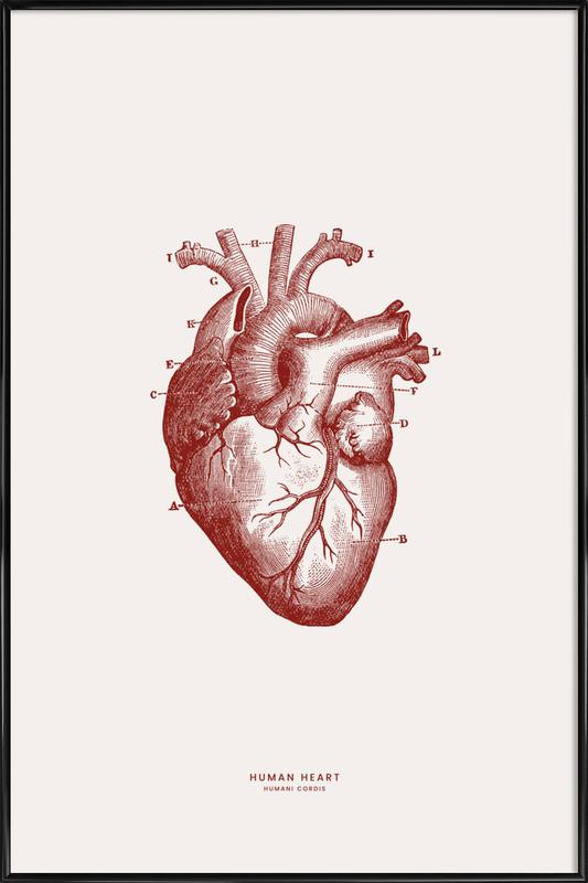 Human Heart II Poster i standardram