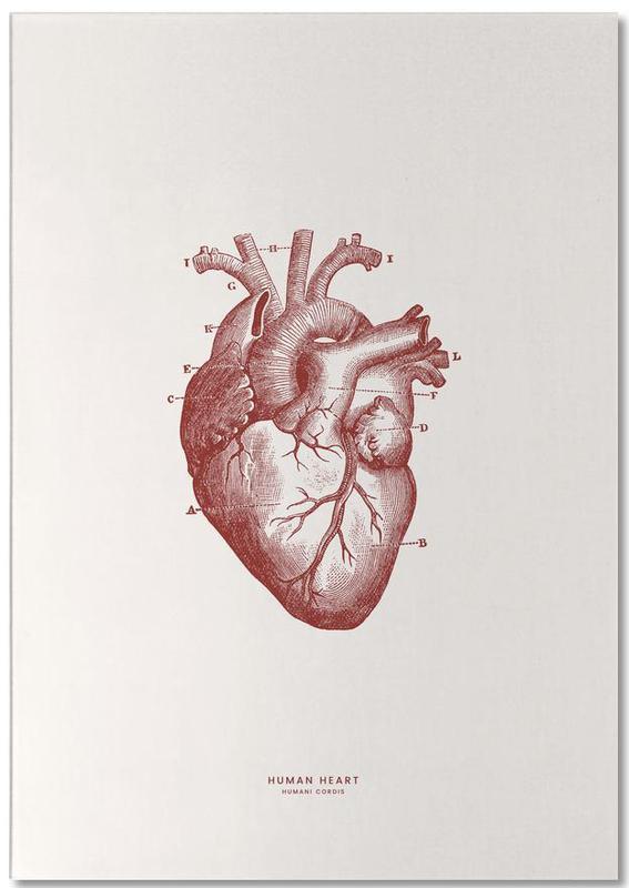 Human Heart II Notepad