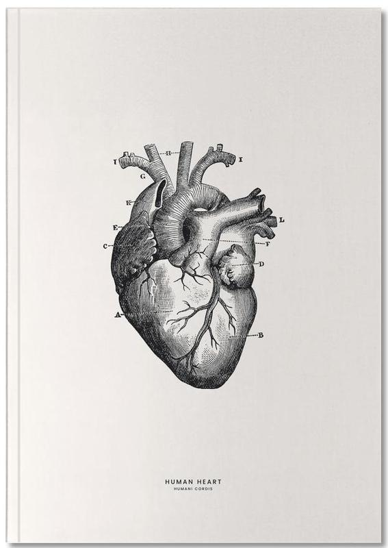 Human Heart Notebook