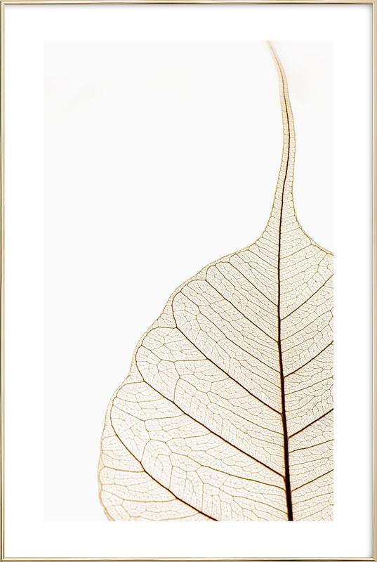 Translucent Leaf Poster in Aluminium Frame