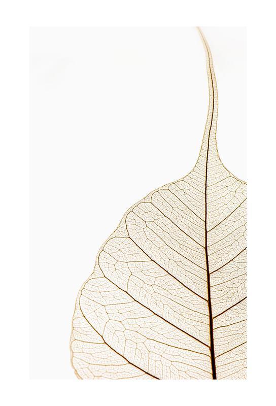 Translucent Leaf Aluminium Print