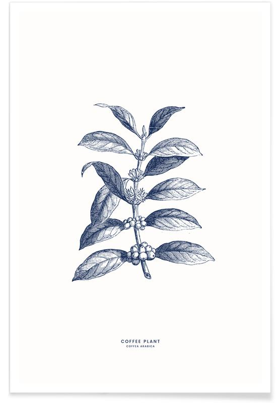 Blade & planter, Kaffe, Coffee Plant II Plakat
