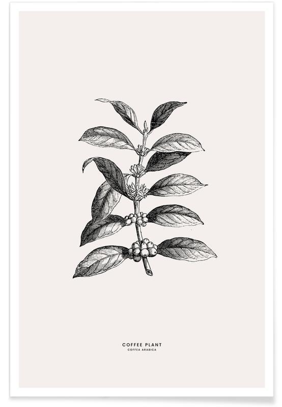Blade & planter, Kaffe, Kaffeplante Plakat