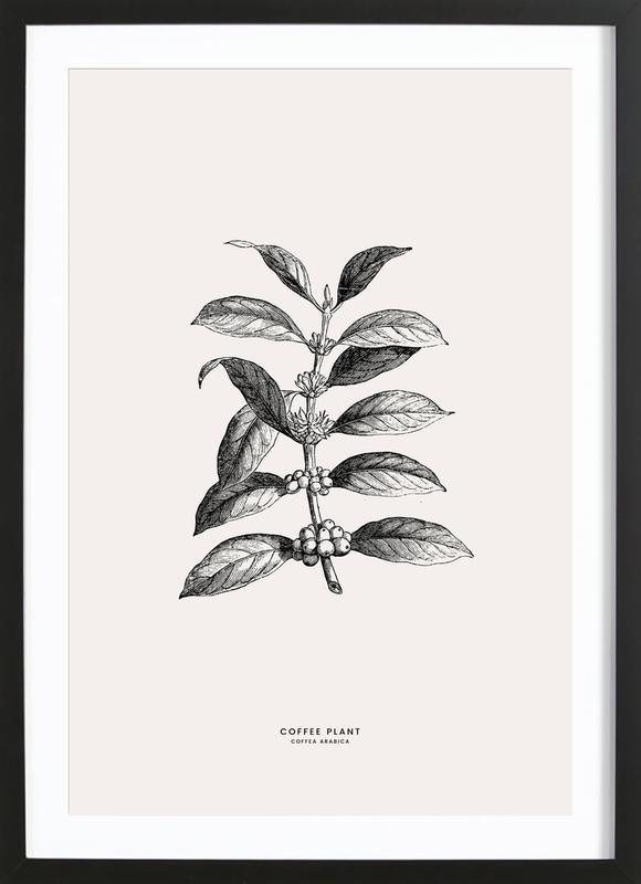 Coffee Plant -Bild mit Holzrahmen