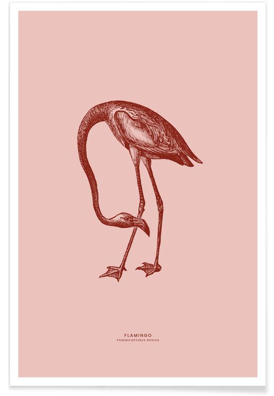 Børneværelse & kunst for børn, Flamingoer, Flamingo II Plakat