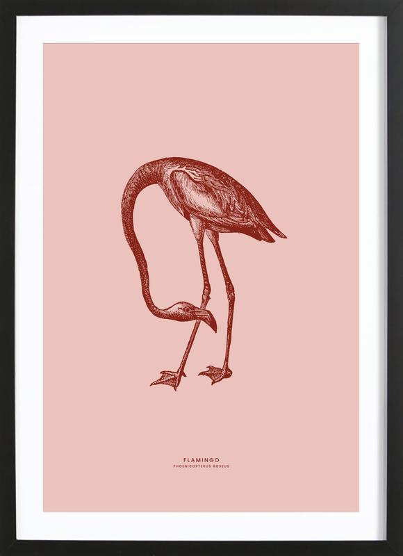 Flamingo II -Bild mit Holzrahmen