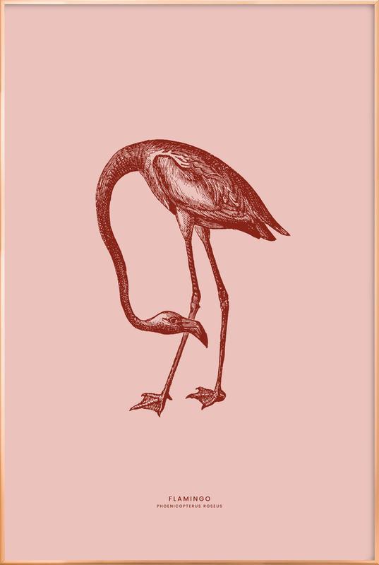 Flamingo II poster in aluminium lijst