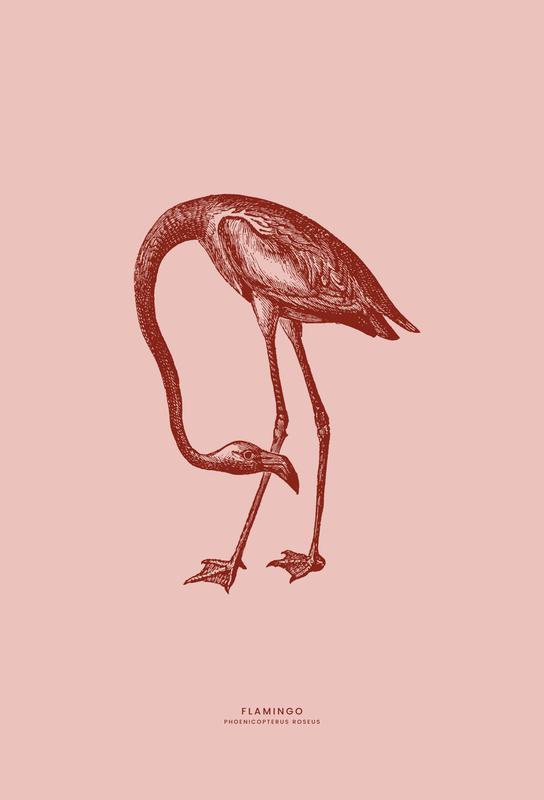 Flamingo II -Acrylglasbild
