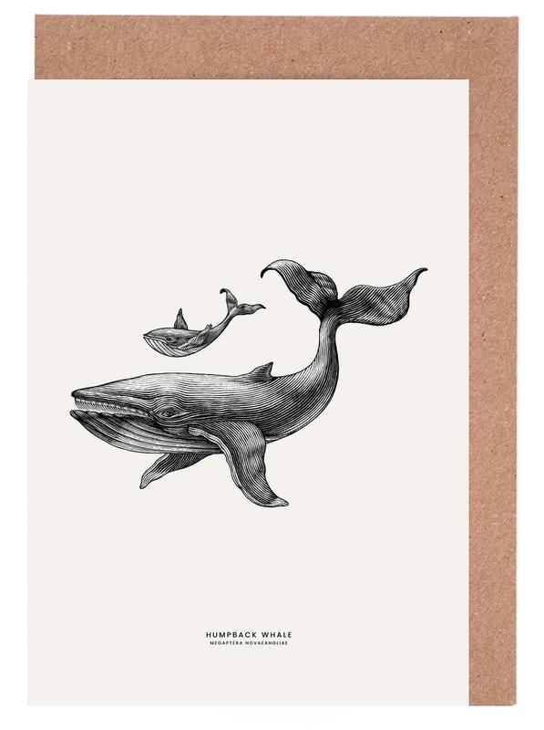 Humpback Whale -Grußkarten-Set