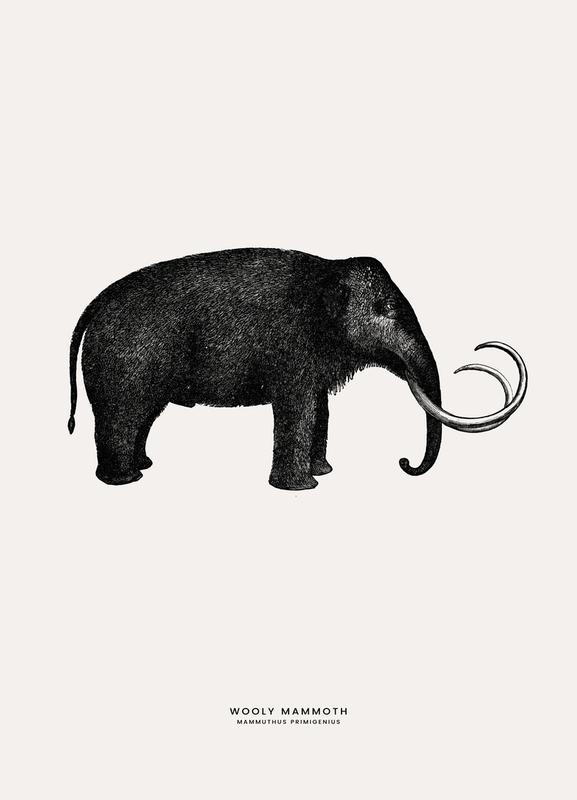 Mammoth Canvastavla