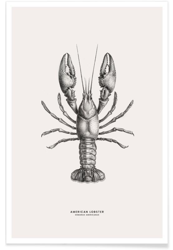, American Lobster Plakat
